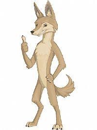 AOD Coyote