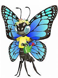 AOD Butterfly