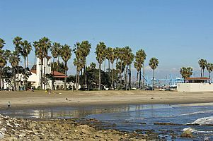 Take Action Beach Cleanup